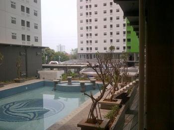 pool pino4